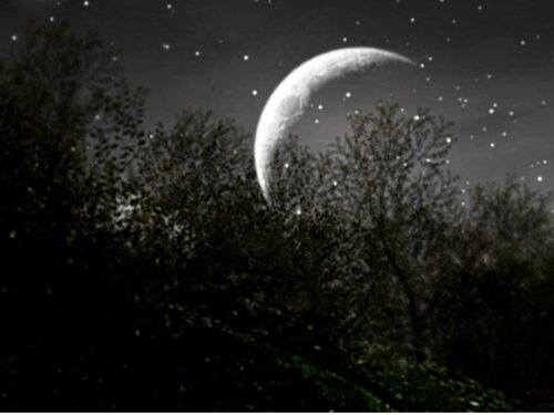 Spunta la Luna